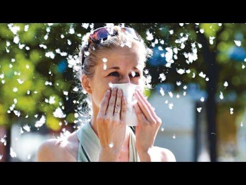Виды аллергических реакций на коже фото