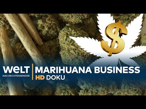 Big Business CANNABIS - Der grüne Rausch | Doku