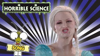 Horrible Science - Don't Let It Go | Science Songs | Science for Kids