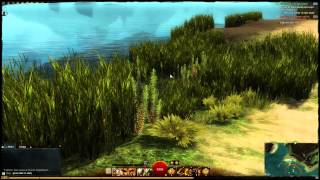 Guild Wars 2 - Platinum Ore Farming (Location Guide)