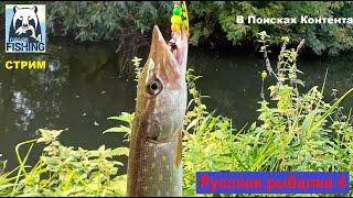 Троллинг на реке Сура Русская рыбалка 4 Рыбалка в марте Фарм не главное РР4 Прямой эфир