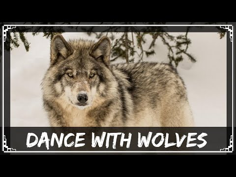 [Original Mix] SharaX - Dance With Wolves