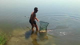 Риболов на шаран на яз. Бодрово