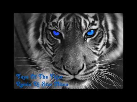 Eye Of The Tiger [Remixed By  Dj Star Nitou] 2016
