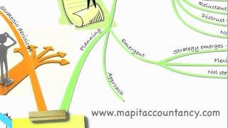 ACCA P3 Lecture 1 - Strategy Formation