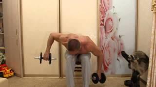 Как накачаться дома. Тренировка №2 - на МАССУ и СУШКУ: плечи + руки(, 2014-02-06T09:06:30.000Z)