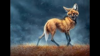 Painting time lapse - Maned wolf