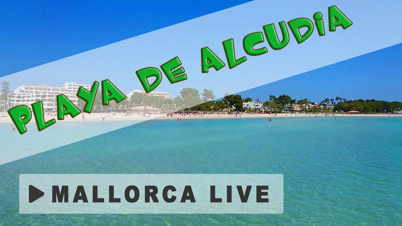 strand playa de alcudia einer der grossten strande mallorcas mallorca urlaub