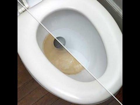 Como limpiar tu toilet con jabon de fregar platos youtube - Como limpiar wc ...