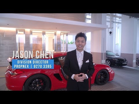 Parvis Luxurious Penthouse - Holland Hill District 10 Singapore - jason chen