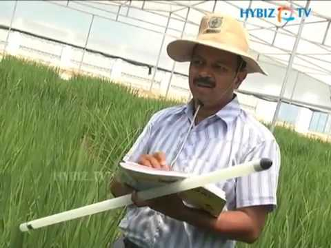 Bioseed Research India Pvt Ltd, Hyderabad, Andhra Pradesh
