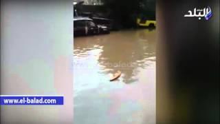 بالفيديو والصور.. «كفر الدوار» تنضم لطابور منكوبي السيول.. الأهالي يلقون المسئولية على رئيس المدينة