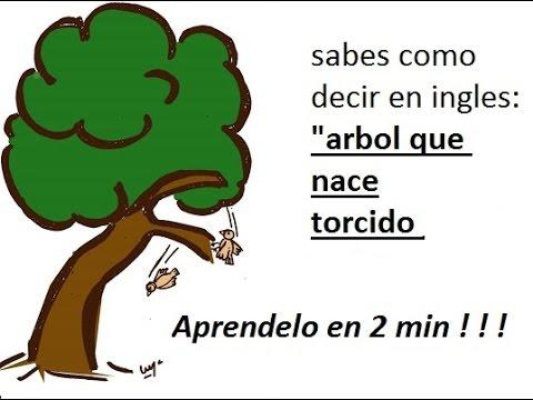 Arbol que nace torcido jamas su rama endereza yahoo dating 4