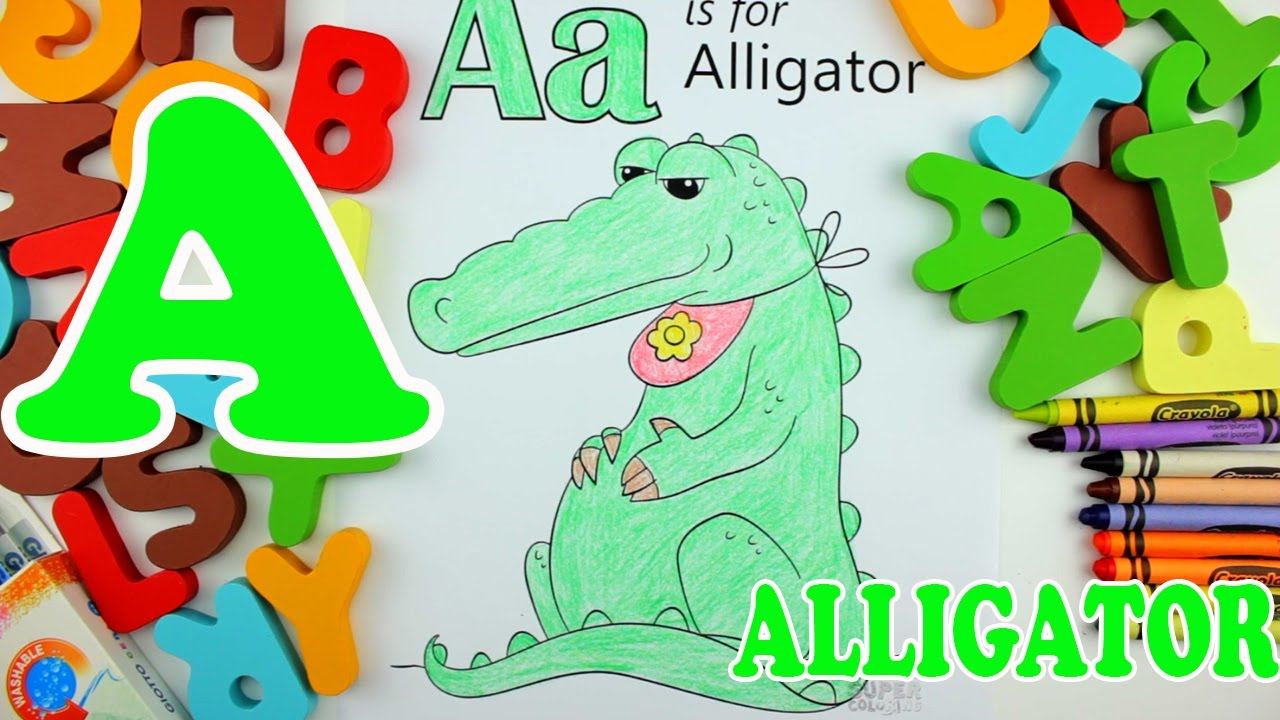 Learn Alphabet - Letter A Alligator coloring pages - Education video for  kids