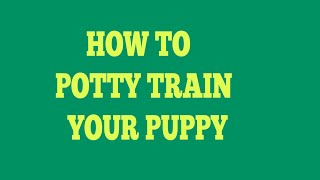 How To Potty Train Cavalier King Charles Spaniels