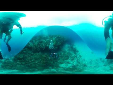 Scuba Diving San Andrés 2018 Part 1