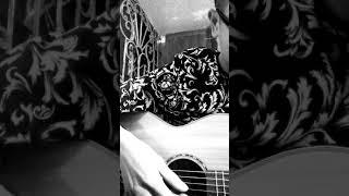 Một năm mới bình an guitar lỗi cover 🎸