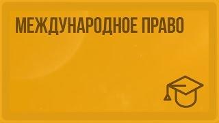 Международное право. Видеоурок по обществознанию 10 класс