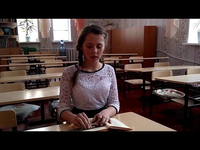 Изображение предпросмотра прочтения – АнастасияКраснодубец читает произведение «Необычайное приключение, бывшее сВладимиром Маяковским летом надаче» В.В.Маяковского