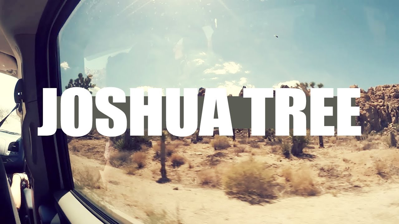 W&T: Joshua Tree