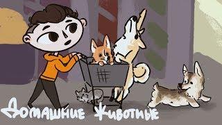 МОИ ДОМАШНИЕ ЖИВОТНЫЕ ^ↀᴥↀ^ (анимация)