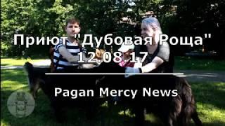 """Поездка в приют для собак """"Дубовая Роща"""" 12.08.17"""