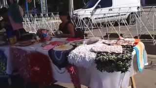 Gral. Alvear ( Mendoza ) - feria de la avenida Alvear