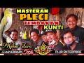 Masteran Pleci Tembakan Kunti Panjang Koloni Utara  Mp3 - Mp4 Download