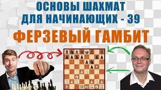 Ферзевый гамбит. Основы шахмат для начинающих 39. Игорь Немцев