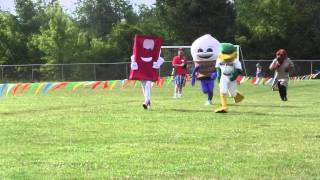 2015 Book'n It Run Mascot Race