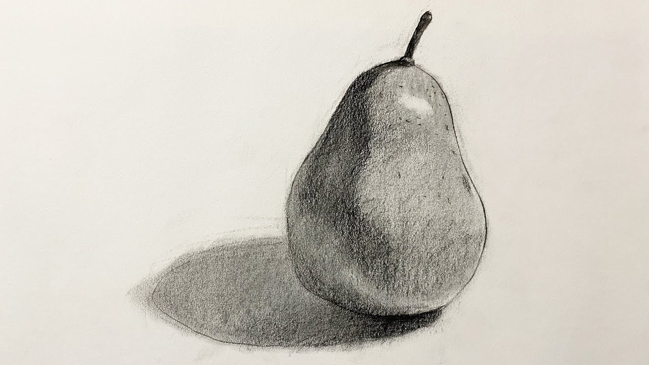 Charcoal Drawing. for Beginners - YouTube