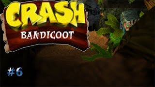 Indiana Crash/Crash Bandicoot #6
