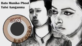 Tulsi Aanganma Ropaula - Bato Muniko Phool - Babu Bogati [Madalu Karaoke]
