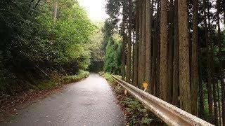 【腐道 / 地域の幹線道路】京都府道107号 雲ヶ畑杉坂線 (持越峠越え)