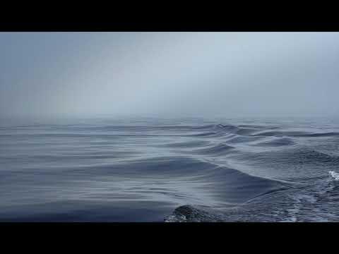 Nellie Mckay on The ViewKaynak: YouTube · Süre: 6 dakika41 saniye
