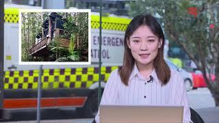 20190416澳洲新闻| 法国巴黎圣母院突发大火 总统马克龙宣布将重建  悉尼开裂澳宝塔:近半数公寓仍无法居住