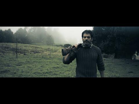 Sifar - Mere Haal Ki (Official Video)