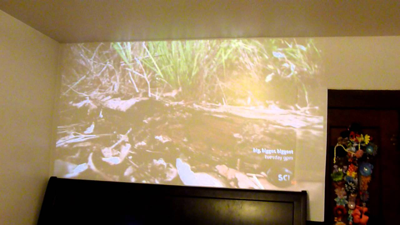 Vivitek Qumi Q2 300 Lumen WXGA HDMI 3D-Ready Pocket DLP Projector ...