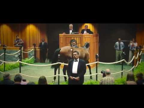 The Saratoga Sale: American Pharoah