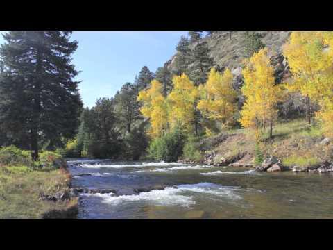 North Fork Ranch Fishing