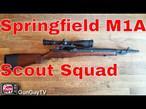Another Great Defensive Rifle - Springfield Armory M1A Scout Squad