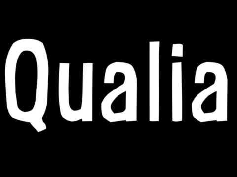 Philosophy Qualia