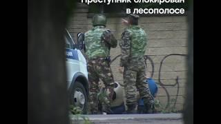 В Кратово ищут вооруженного преступника, застрелившего несколько человек