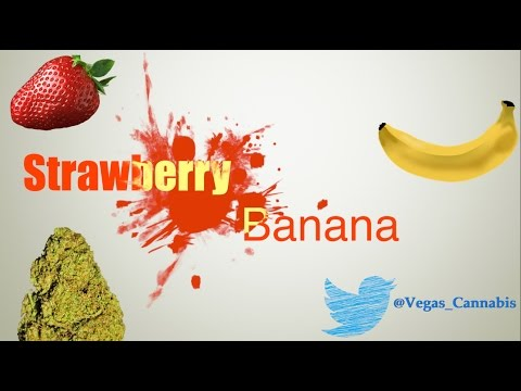 Strawberry Banana Strain Information / Review