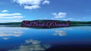 Zedd feat. Foxes - Clarity (Vicetone Remix)