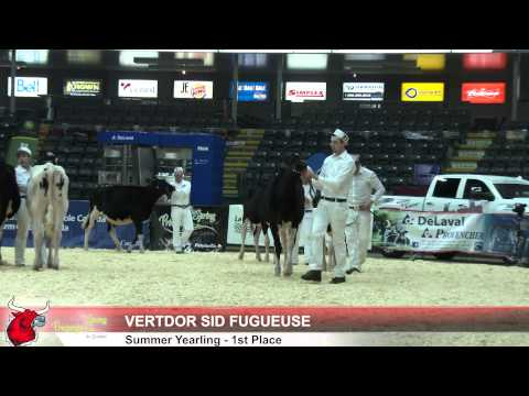 Quebec Spring Holstein Show 2015 - Post Show Interview with Judge John Crowley