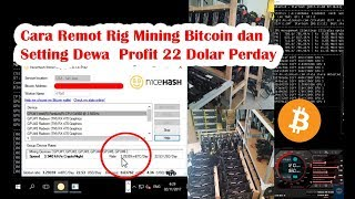 Cara Setting Dewa, Profit 22 Dolar  Perhari | Mining Bitcoin DGN Nicehash