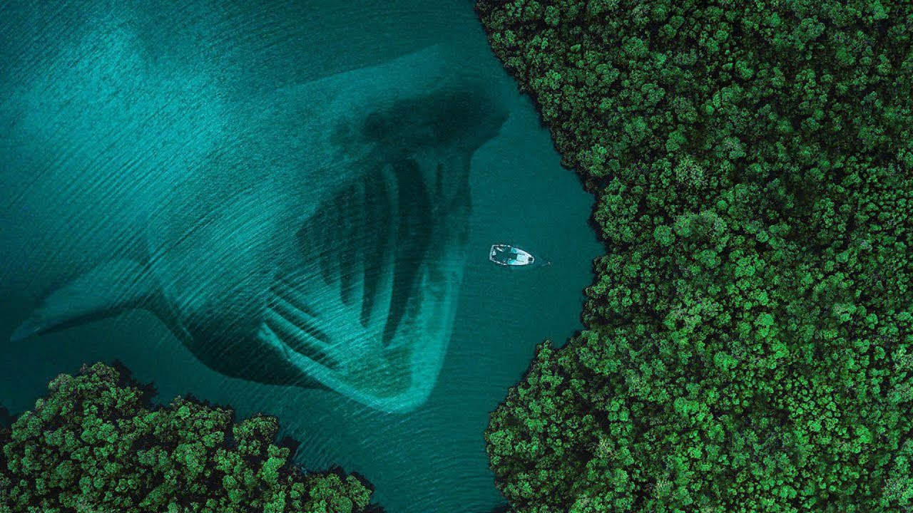 What Did Scientists Really See In The Mariana Trench ...