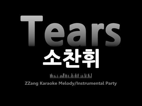 TEARS - So Chan Whee - LETRAS.COM