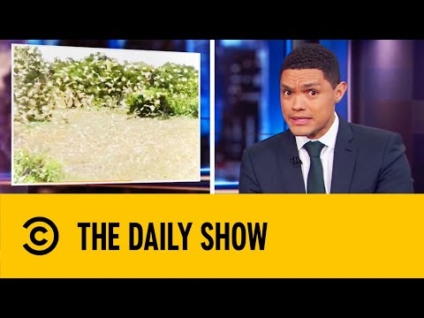 Hundreds Of Billions Of Locusts Ravage East Africa | The Daily Show With Trevor Noah
